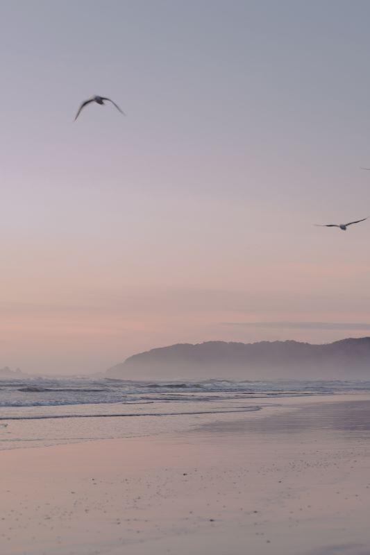 Versagensangst aus der Vogelperspektive
